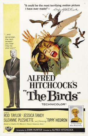 Cartaz Os Pássaros
